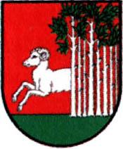 miasto Bojanowo