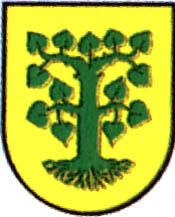 miasto Borne Sulinowo