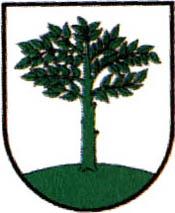 miasto Braniewo