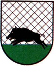 miasto Debrzno
