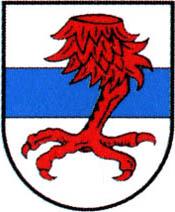 miasto Dobrzany