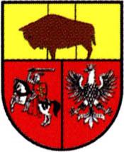 miasto Drohiczyn