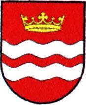 miasto Drzewica