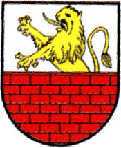 miasto Działoszyce