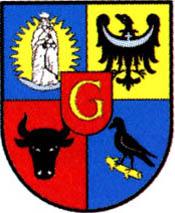 miasto Głogów