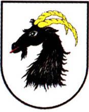 miasto Głuchołazy