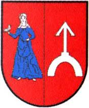 miasto Golub-Dobrzyń
