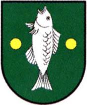 miasto Górzno