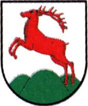 miasto Gorzów Śląski