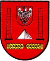 miasto Janikowo