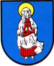 miasto Janów Lubelski