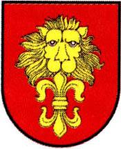 miasto Jasień