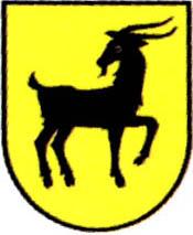 miasto Kałuszyn