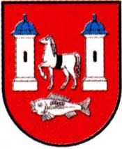miasto Kock