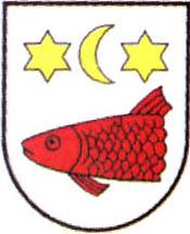 miasto Kowalewo Pomorskie