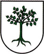 miasto Kruszwica