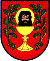 miasto Łasin