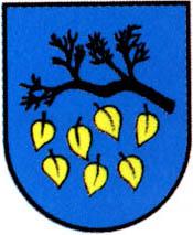 miasto Łaziska Górne