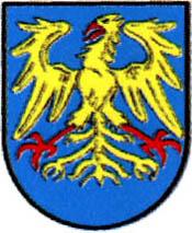 miasto Leśnica