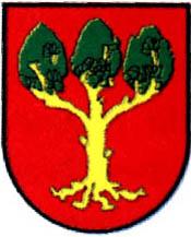 miasto Lubraniec
