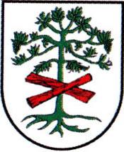 miasto Międzybórz