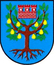 miasto Międzychód