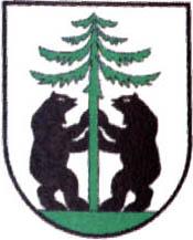 miasto Mieszkowice