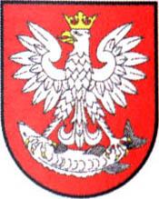 miasto Nieszawa
