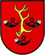 miasto Obrzycko
