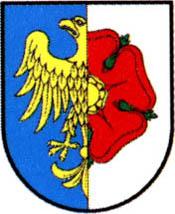 miasto Olesno