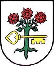 miasto Opalenica
