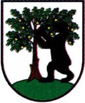miasto Pełczyce