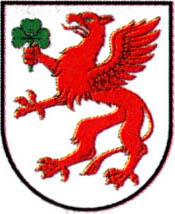 miasto Płoty