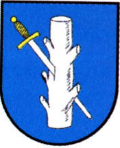 miasto Rakoniewice