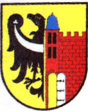 miasto Ścinawa