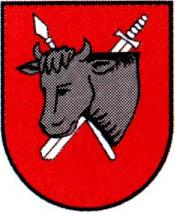 miasto Sejny