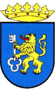 miasto Skwierzyna