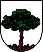 miasto Sośnicowice