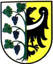 miasto Środa Śląska