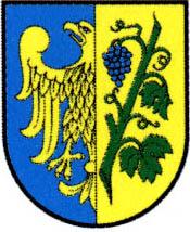 miasto Strzelce Opolskie