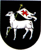 miasto Sulęcin