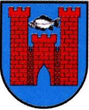 miasto Suraż