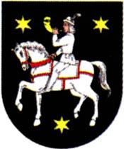 miasto Syców