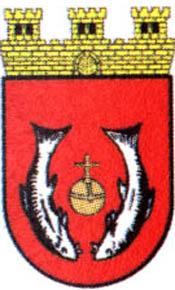 miasto Szamocin