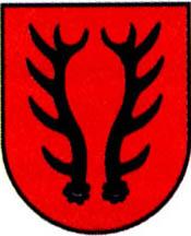 miasto Szlichtyngowa