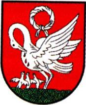 miasto Szubin