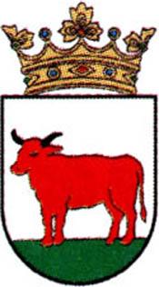 miasto Trzcianka