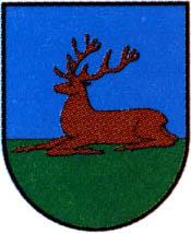 miasto Wieleń