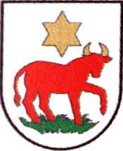 miasto Wielichowo