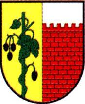 miasto Witnica